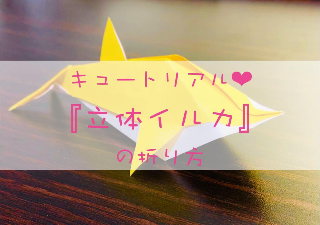イルカの折り方_Top