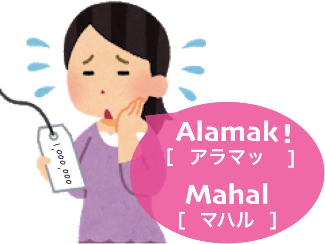 lesson3_ex5_mahal