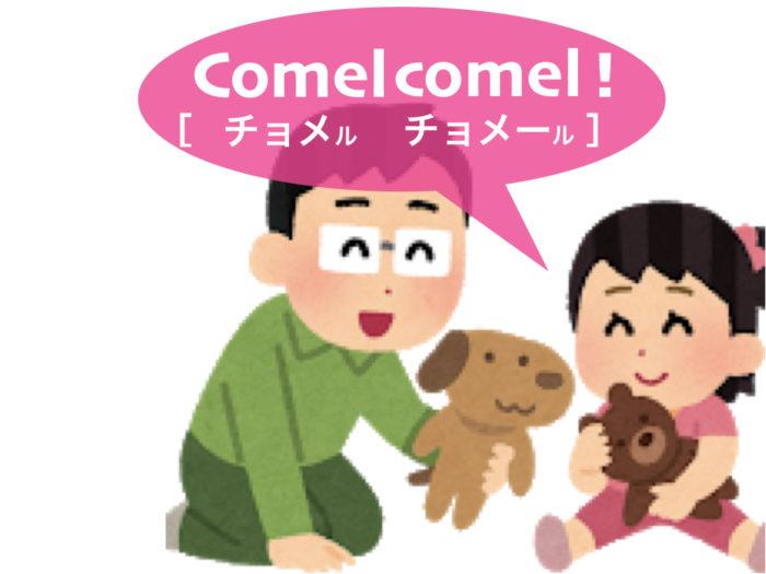 lesson4_ex8_comel